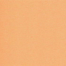 светло оранжевый